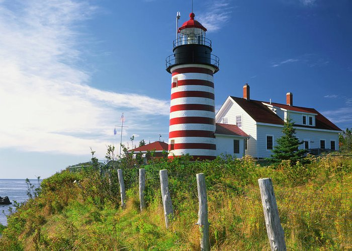 Quoddy Head State Park Greeting Cards