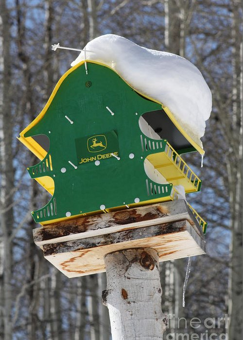 Bird House Greeting Card featuring the photograph Vacancy by Brandi Maher