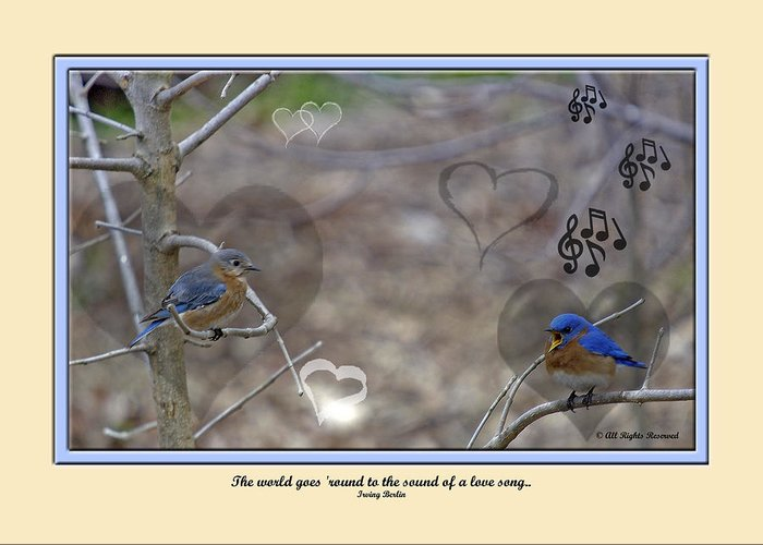 Greeting Card featuring the photograph Val01 by Helen Ellis