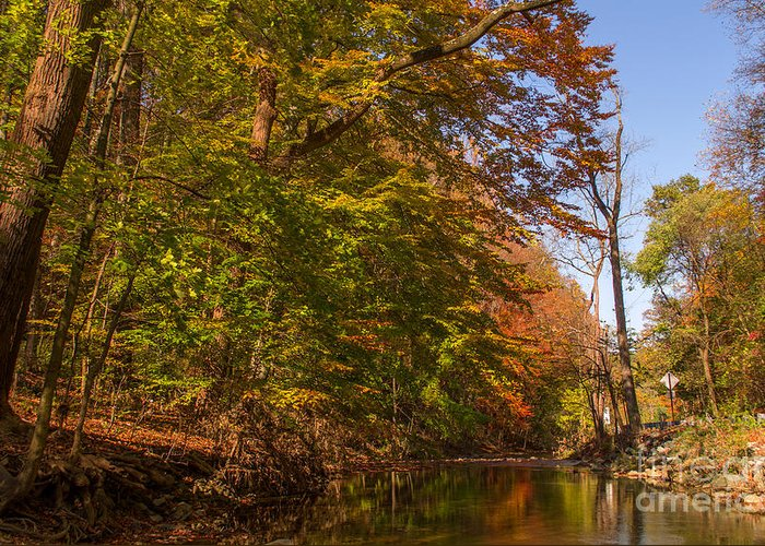 Fall Greeting Card featuring the photograph Valley Creek by Rima Biswas