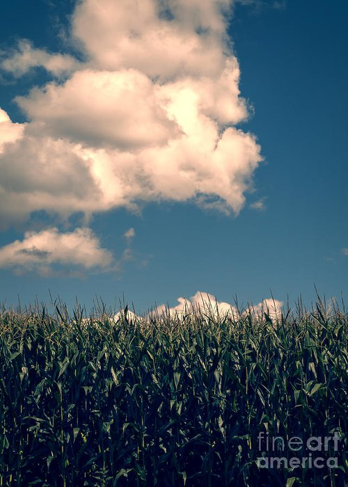 Cloud Greeting Card featuring the photograph Vermont Cornfield by Edward Fielding