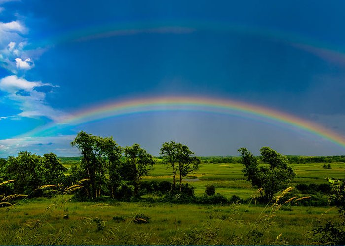 Clouds Greeting Card featuring the photograph Vernon Marsh Double Rainbow by Randy Scherkenbach