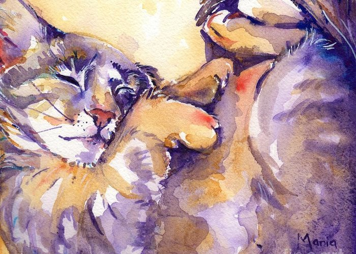 Cats Sleeping Greeting Cards