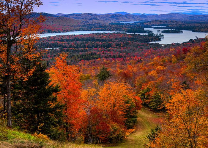 Fall Foliage New York Greeting Cards