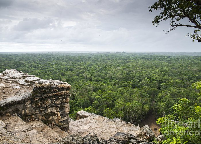 Mayans Greeting Cards