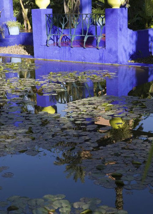 Pond Greeting Card featuring the photograph Villa Des Jardins Majorelle by Omar Hafidi