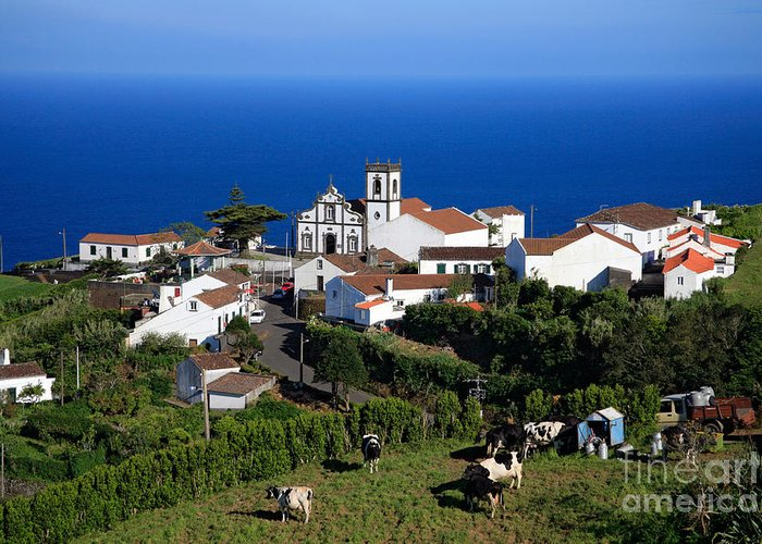 Pedreira Do Nordeste Greeting Card featuring the photograph Village In Azores Islands by Gaspar Avila