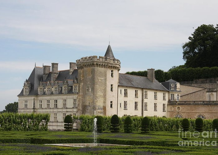 Palace Greeting Card featuring the photograph Villandry Chateau And Boxwood Garden by Christiane Schulze Art And Photography
