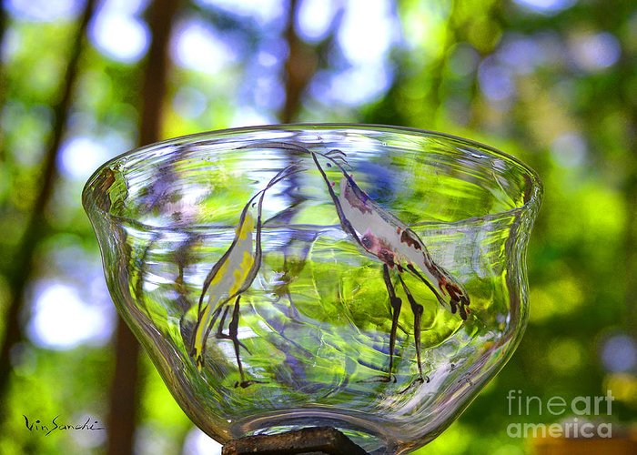 Nature Greeting Card featuring the glass art Vinsanchi Glass Art-4 by Vin Kitayama