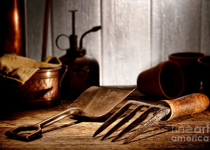 Gardening Greeting Card featuring the photograph Vintage Gardening Tools by Olivier Le Queinec