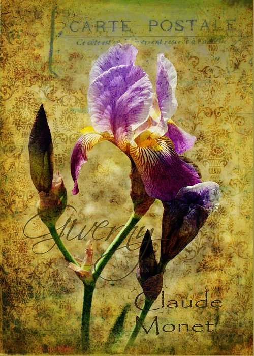 Iris Greeting Card featuring the photograph Vintage Iris by Carla Parris