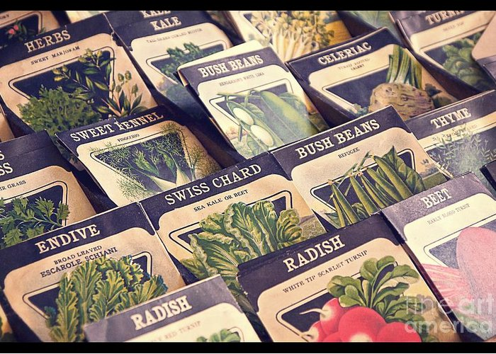 Garden Greeting Card featuring the photograph Vintage Seed Packages by Edward Fielding