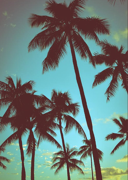 Aged Greeting Card featuring the photograph Vintage Tropical Palms by Mr Doomits