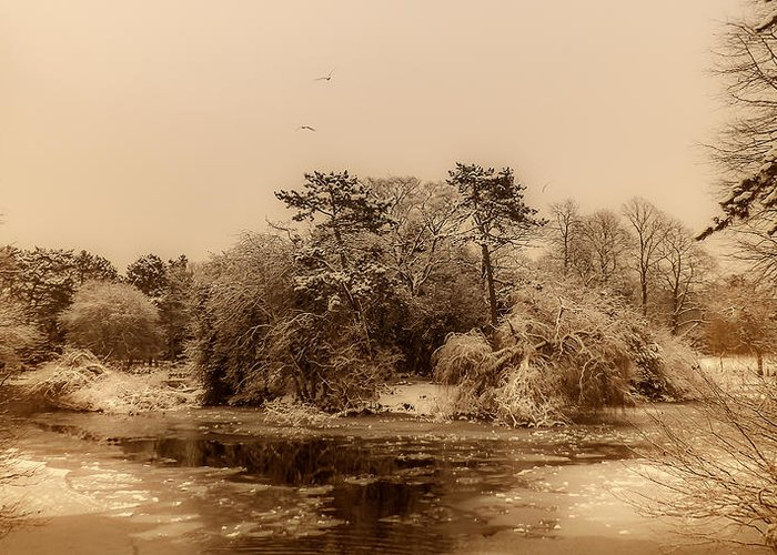 Winter Scene Greeting Card featuring the photograph Vintage Winter by Lina Jordaan