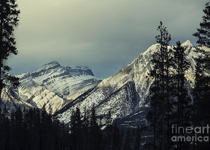 Canmore Greeting Card featuring the photograph Visions Prelude by Evelina Kremsdorf
