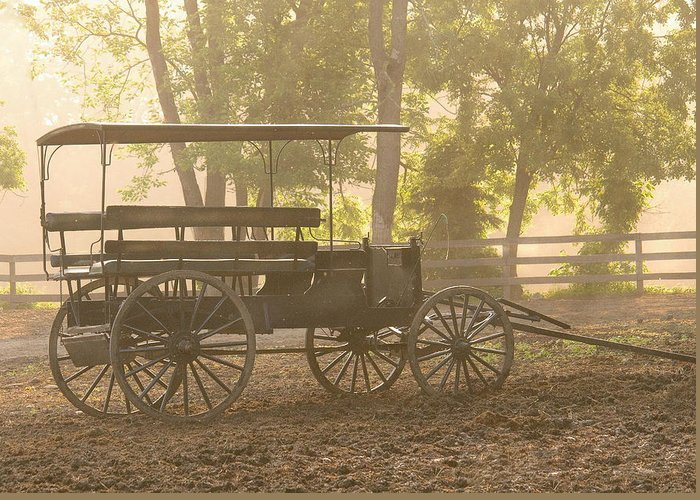 Savad Greeting Card featuring the photograph Wagon - Abe's Buggie by Mike Savad