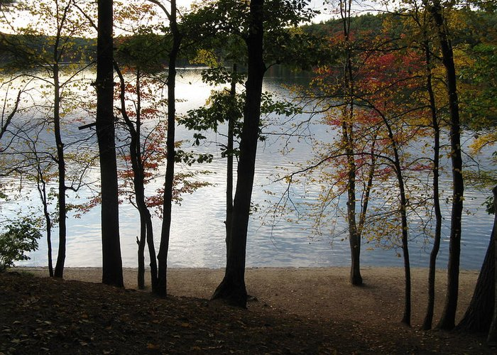 Autumn Greeting Card featuring the photograph Walden Pond In Autumn by Sheila Savage