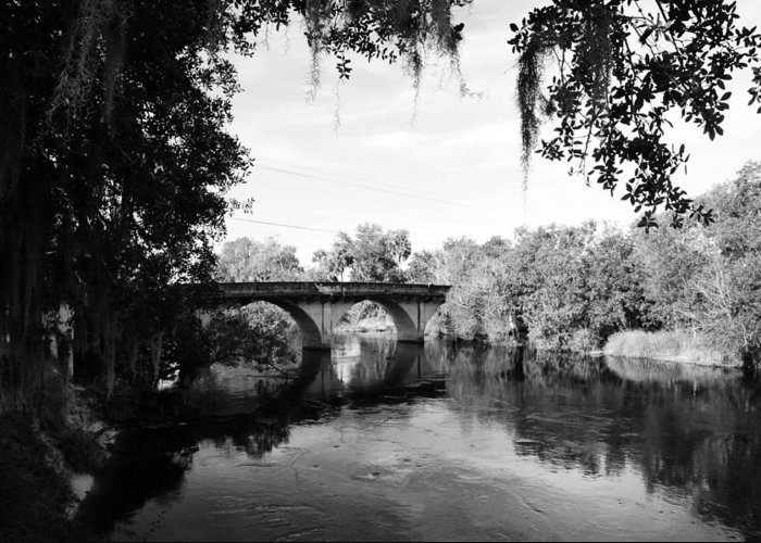 Black And White Greeting Card featuring the photograph Walking Bridge by Antonio Suares