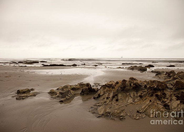 california Beach Greeting Card featuring the photograph Wandering by Amanda Barcon