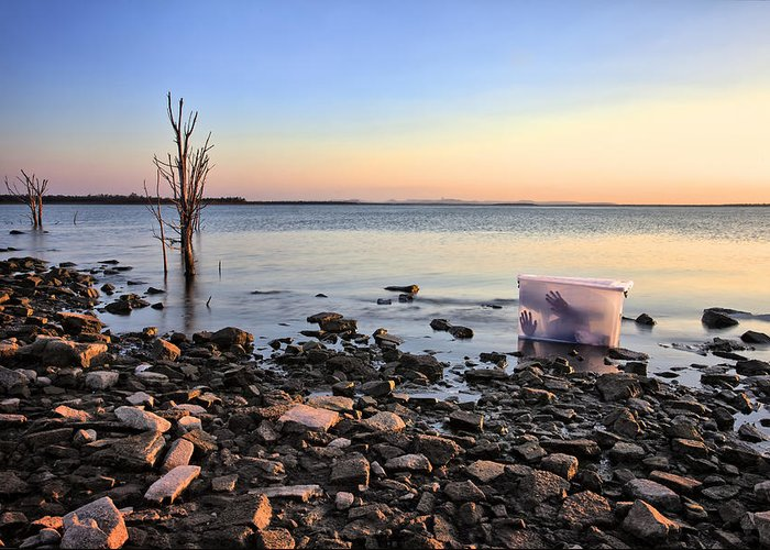 Boxed Greeting Card featuring the photograph Washed Up by Pam B