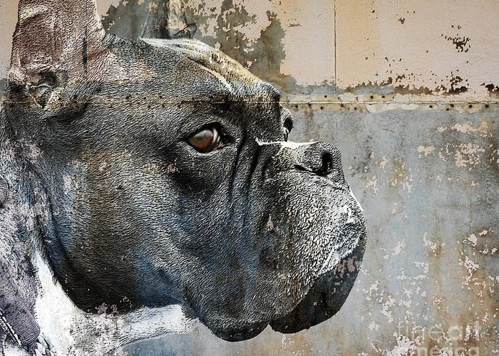 Dog Greeting Card featuring the digital art Watchful by Judy Wood