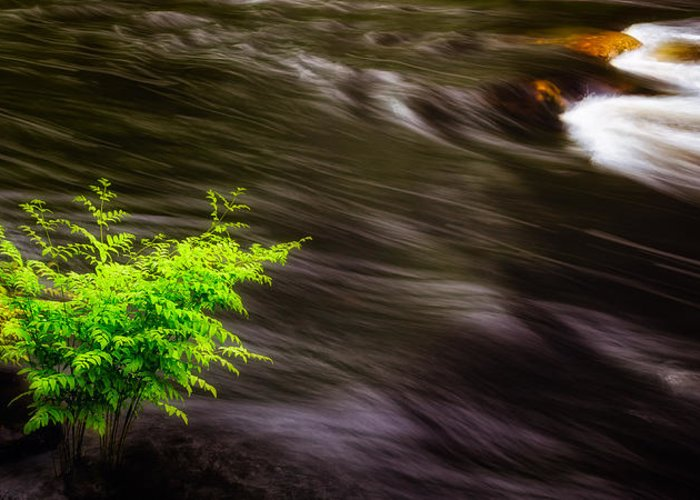 Long Exposure Waterflow Greeting Cards