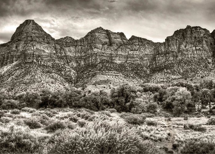 Utah Greeting Card featuring the photograph Watchman Trail In Sepia - Zion by Tammy Wetzel