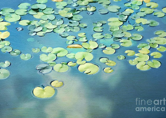 Water Greeting Card featuring the photograph Water Lilies by Darren Fisher