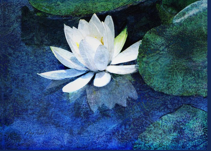 Water Lily Greeting Card featuring the photograph Water Lily Two by Ann Powell
