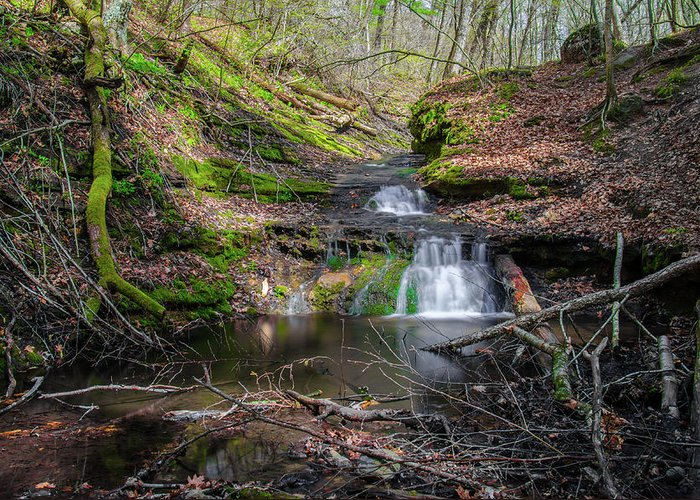 Waterfall Canvas Prints Greeting Card featuring the photograph Waterfall At Parfrey's Glen by Jonah Anderson