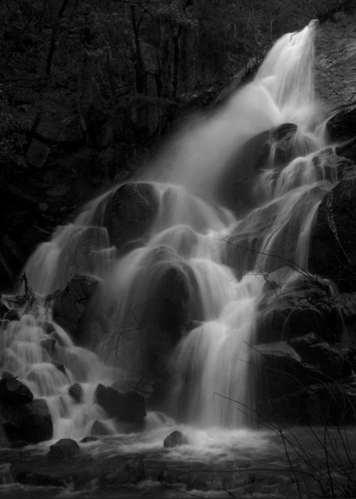 Waterfall Greeting Card featuring the photograph Waterfall In Black And White by Bill Gallagher