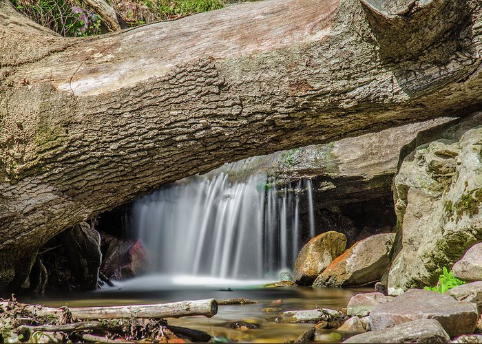 Waterfall Canvas Prints Greeting Card featuring the photograph Waterfall Under Fallen Log by Jonah Anderson