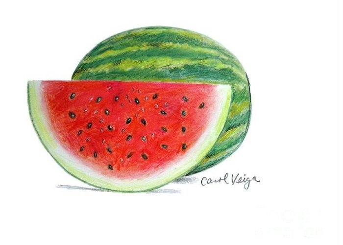 Watermelon Greeting Card featuring the drawing Watermelon by Carol Veiga
