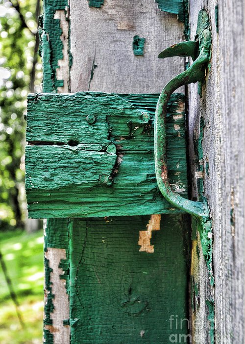 Paul Ward Greeting Card featuring the photograph Weathered Green Paint by Paul Ward