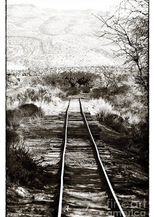 Western Tracks Greeting Card featuring the photograph Western Tracks by John Rizzuto