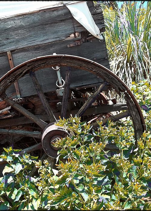 Wheels In The Garden Greeting Card featuring the photograph Wheels In The Garden by Glenn McCarthy Art and Photography