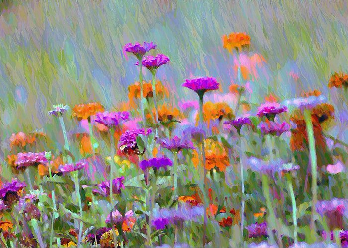 Where Have All The Flowers Gone Greeting Card featuring the photograph Where Have All The Flowers Gone by Bill Cannon
