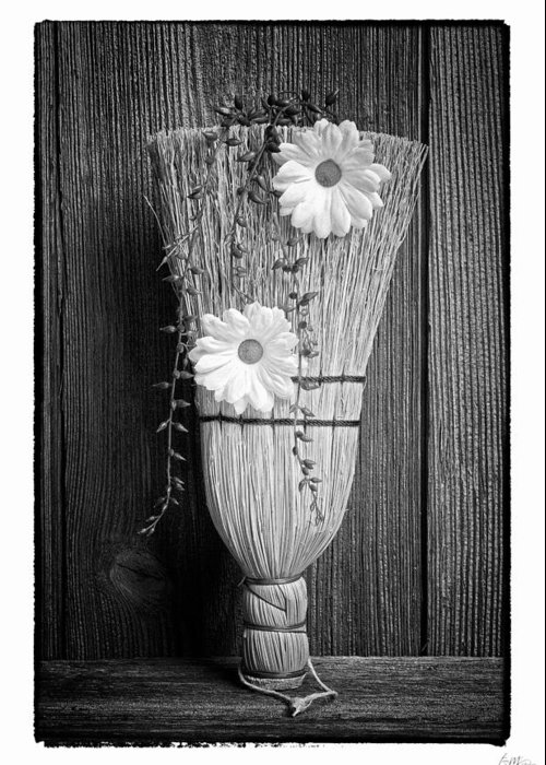 Grunge Greeting Card featuring the photograph Whisk Bloom - Art Unexpected by Tom Mc Nemar