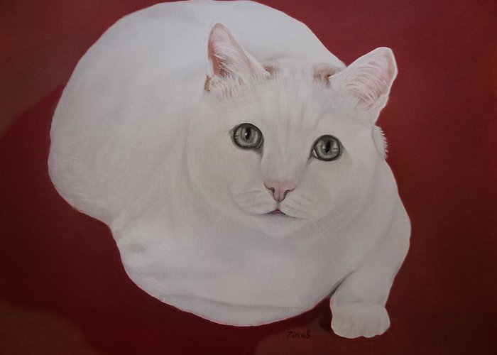 White Cat Greeting Card featuring the painting White Cat by Zina Stromberg