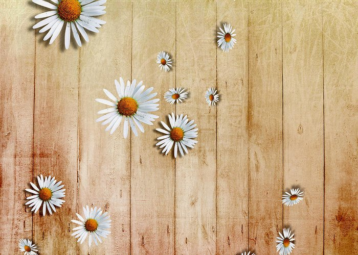Daisies Greeting Card featuring the digital art White Daisies by David Ridley
