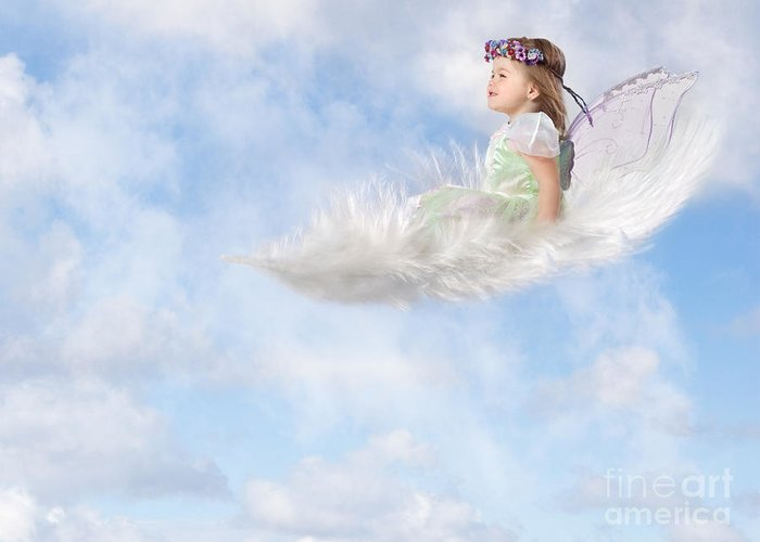 Feather Greeting Card featuring the photograph White Feather Dream by Cindy Singleton