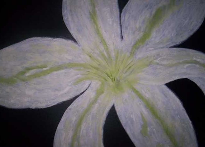 Black Greeting Card featuring the painting White Lilly by Becca Haney