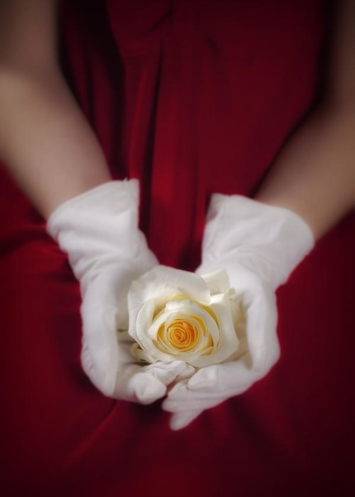 Woman Greeting Card featuring the photograph White Rose by Joana Kruse