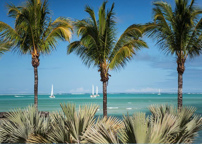 Ocean Greeting Card featuring the photograph White Sails. Mauritius by Jenny Rainbow