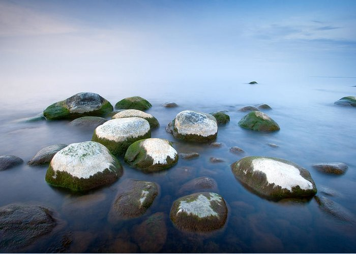 Fog Greeting Card featuring the photograph White Stones In The Water by Anna Grigorjeva