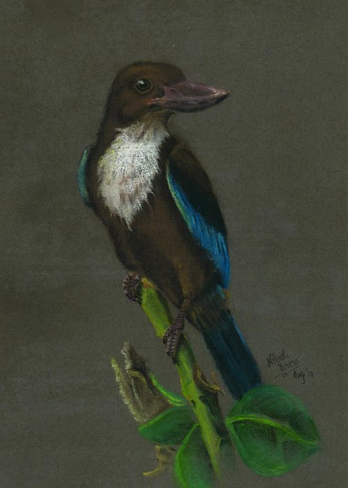 Kingfisher Greeting Card featuring the painting White-throated Kingfisher by Nirosh Perera