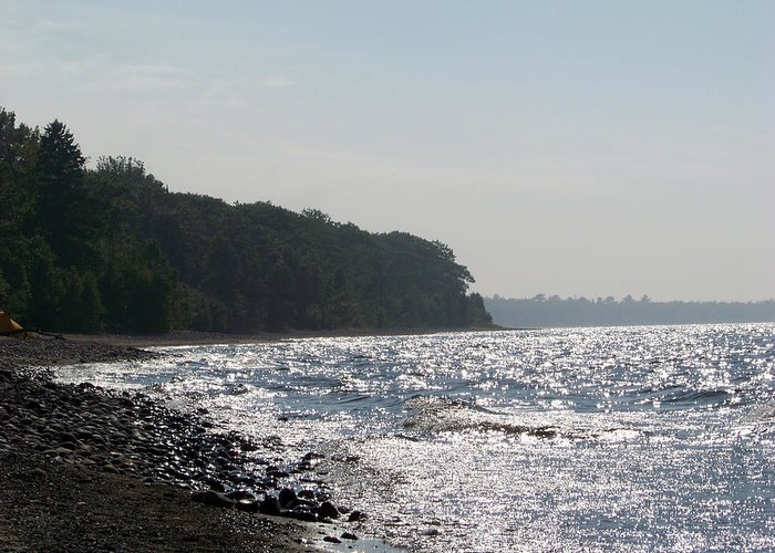Michigan Greeting Card featuring the photograph Whitefish Bay Shoreline by Jennifer King