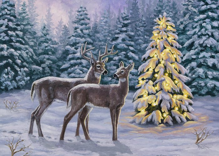 Wildlife Christmas Cards.Whitetail Christmas Greeting Card
