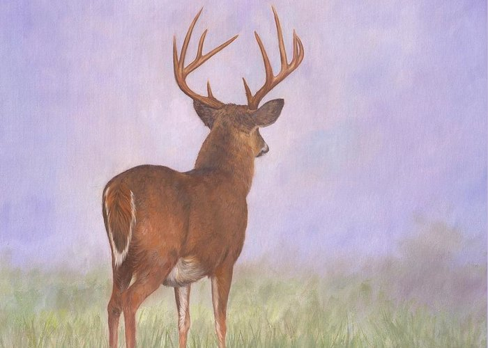 Whitetail Greeting Card featuring the painting Whitetail by David Stribbling