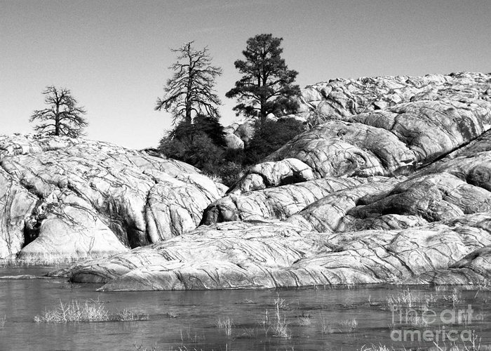 Willow Lake Greeting Card featuring the photograph Willow Lake Number One Bw by Heather Kirk